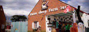 รีวิว เลี้ยงแกะที่ Swiss Sheep Farm หัวหิน