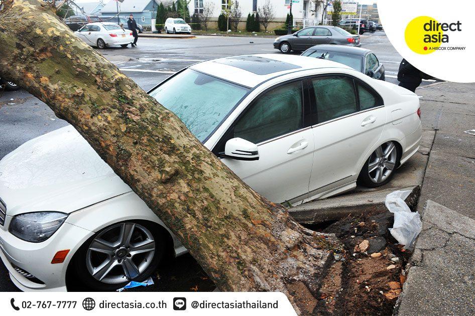 ต้นไม้โค่นทับรถยนต์