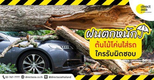 ต้นไม้หักโค่นใส่รถ ประกันรับผิดชอบไหม